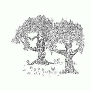 раскраски листья и деревья (37)
