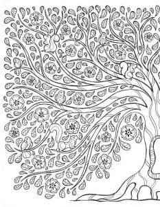 раскраски листья и деревья (41)