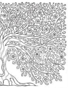 раскраски листья и деревья (42)