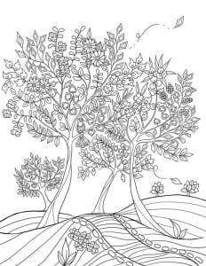 раскраски листья и деревья (5)