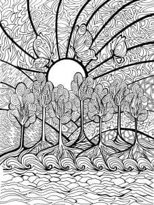 раскраски листья и деревья (51)