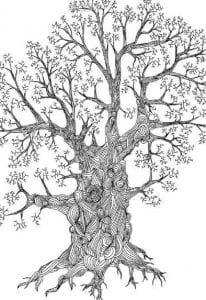 раскраски листья и деревья (56)