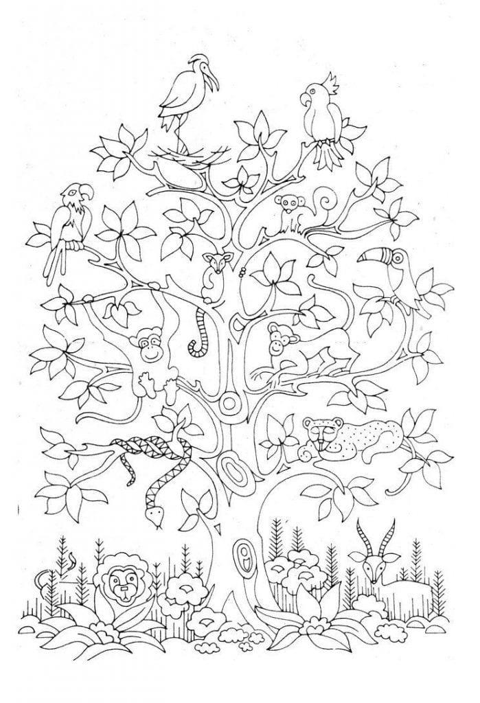 -листья-и-деревья-6-699x1024 раскраски листья и деревья (6)