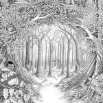 раскраски листья и деревья (8)