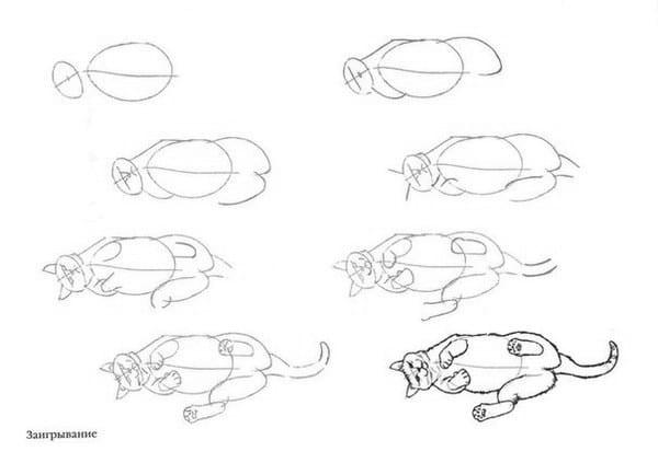 как нарисовать лежачую кошку