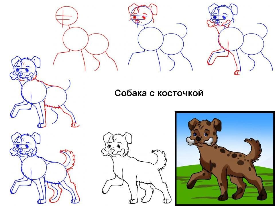 как нарисовать собаку с косточкой