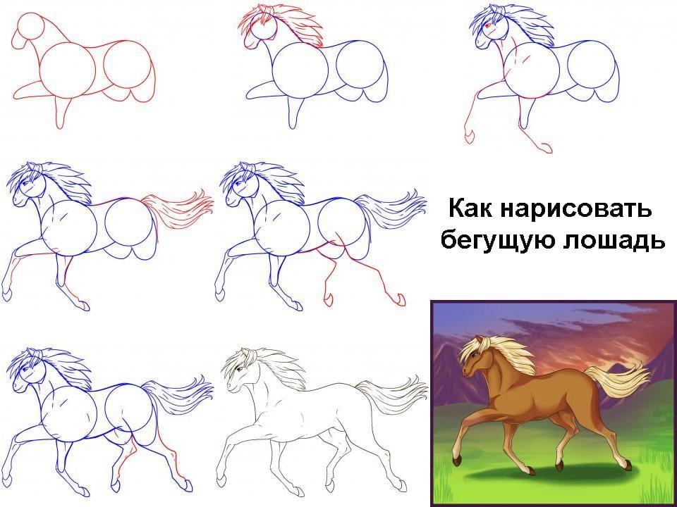 Как нарисовать бегущую лошадь