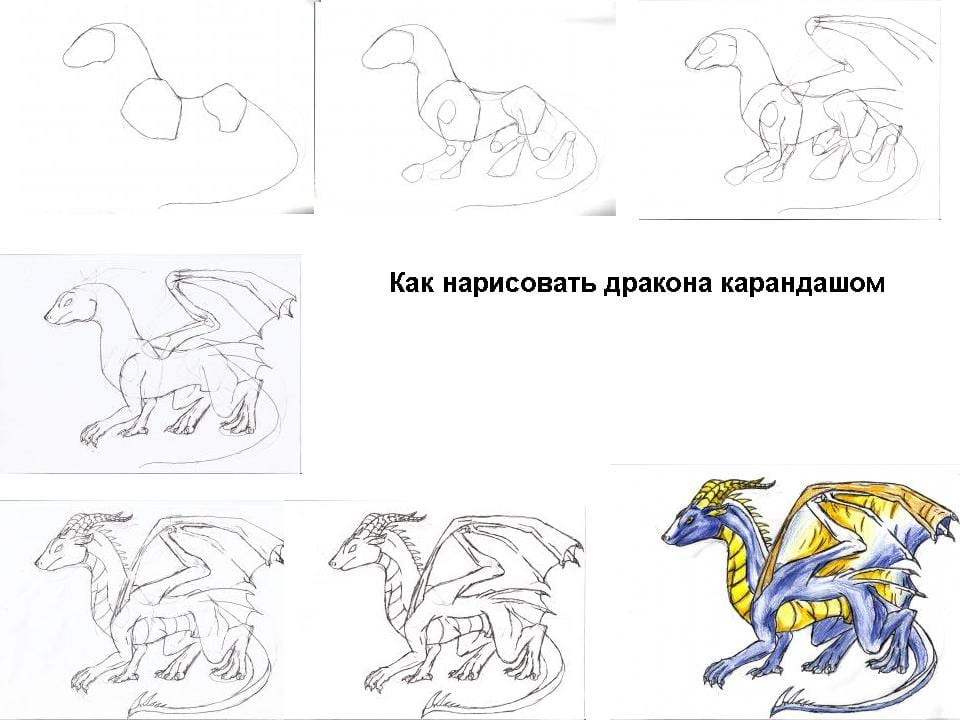 16 Как нарисовать дракона поэтапно