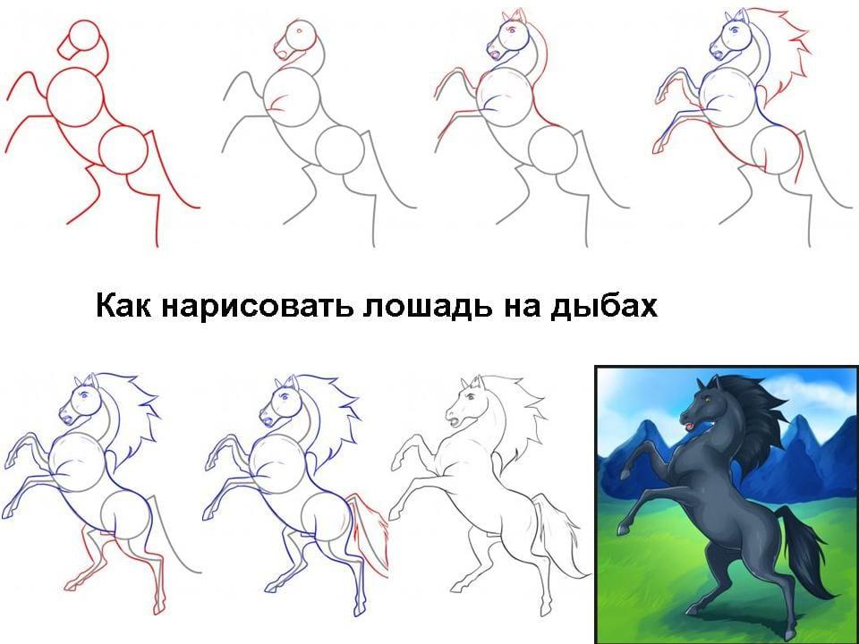 Как нарисовать лошадь на дыбах
