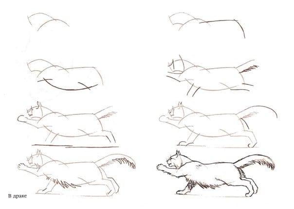как легко нарисовать кота поэтапно