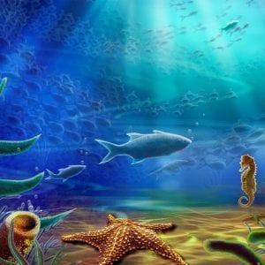 Подводный мир раскраски
