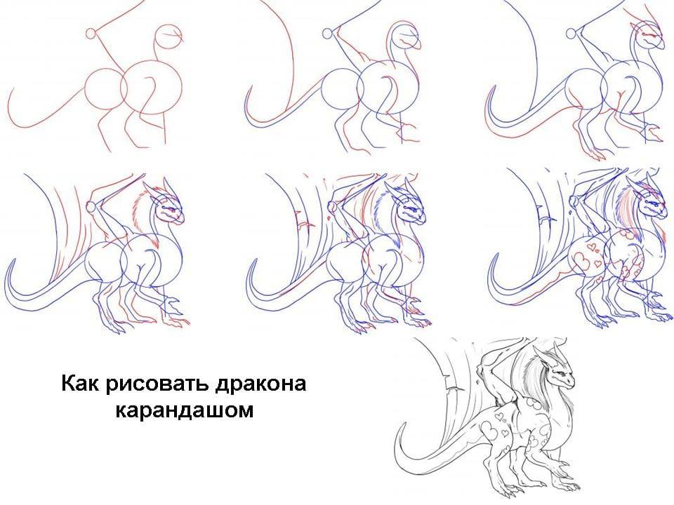 5 Как нарисовать дракона поэтапно