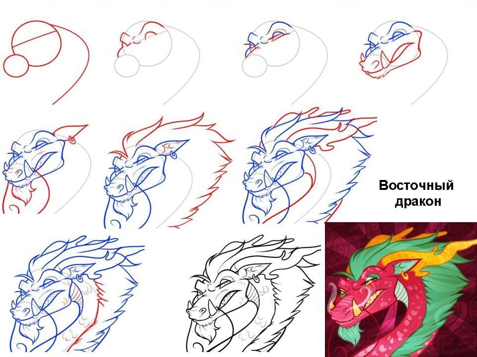 9 Как нарисовать дракона поэтапно