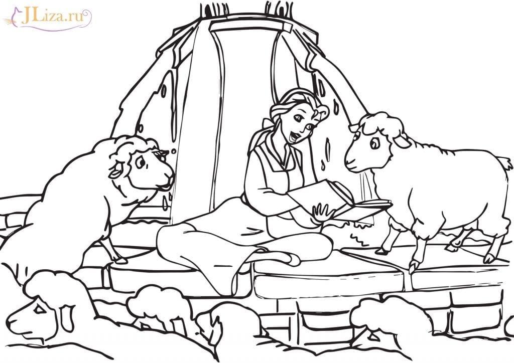 Раскраска Бэлль читает книгу овцам