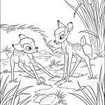 Раскраска Бэмби и Фалина играют