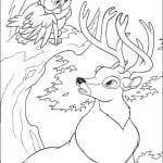 Раскраска Бэмби и сова