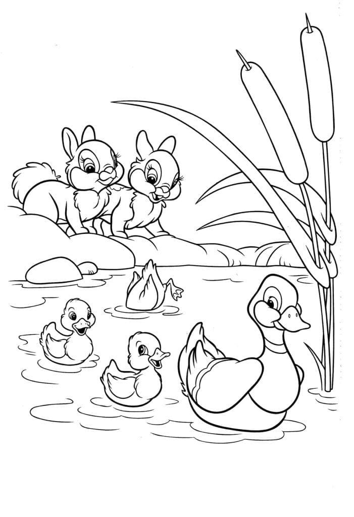 Раскраска Бэмби уточки в пруду