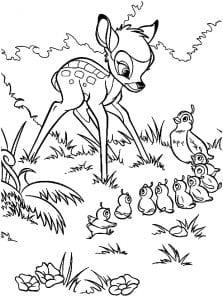 Раскраска Маленький бемби знакомится с куропатками