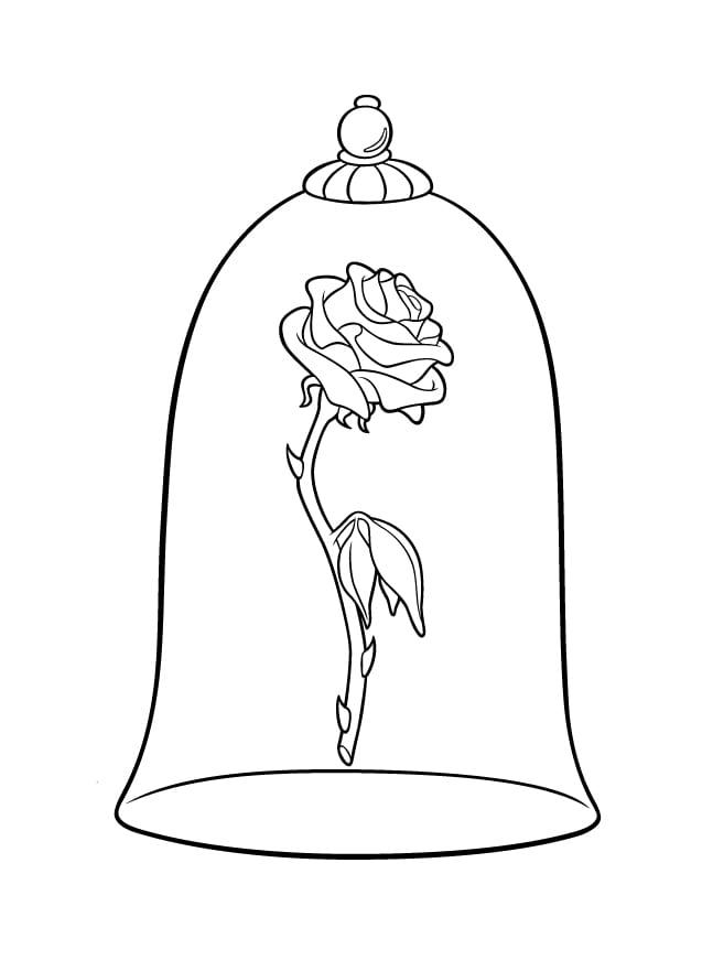 Раскраска волшебная роза