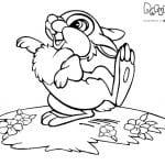 Раскраски Бемби Топотун