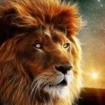 Как нарисовать льва карандашом