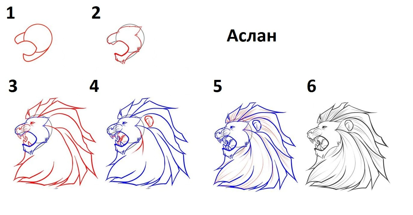 Как нарисовать Аслана