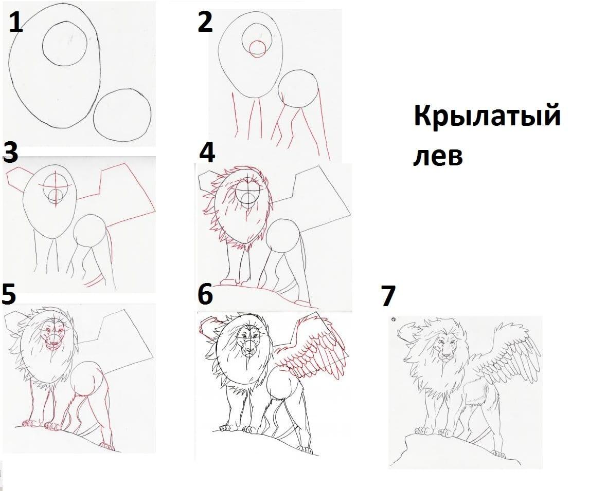 как нарисовать Крылатого льва
