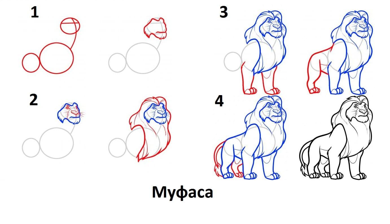 как нарисовать Муфасу