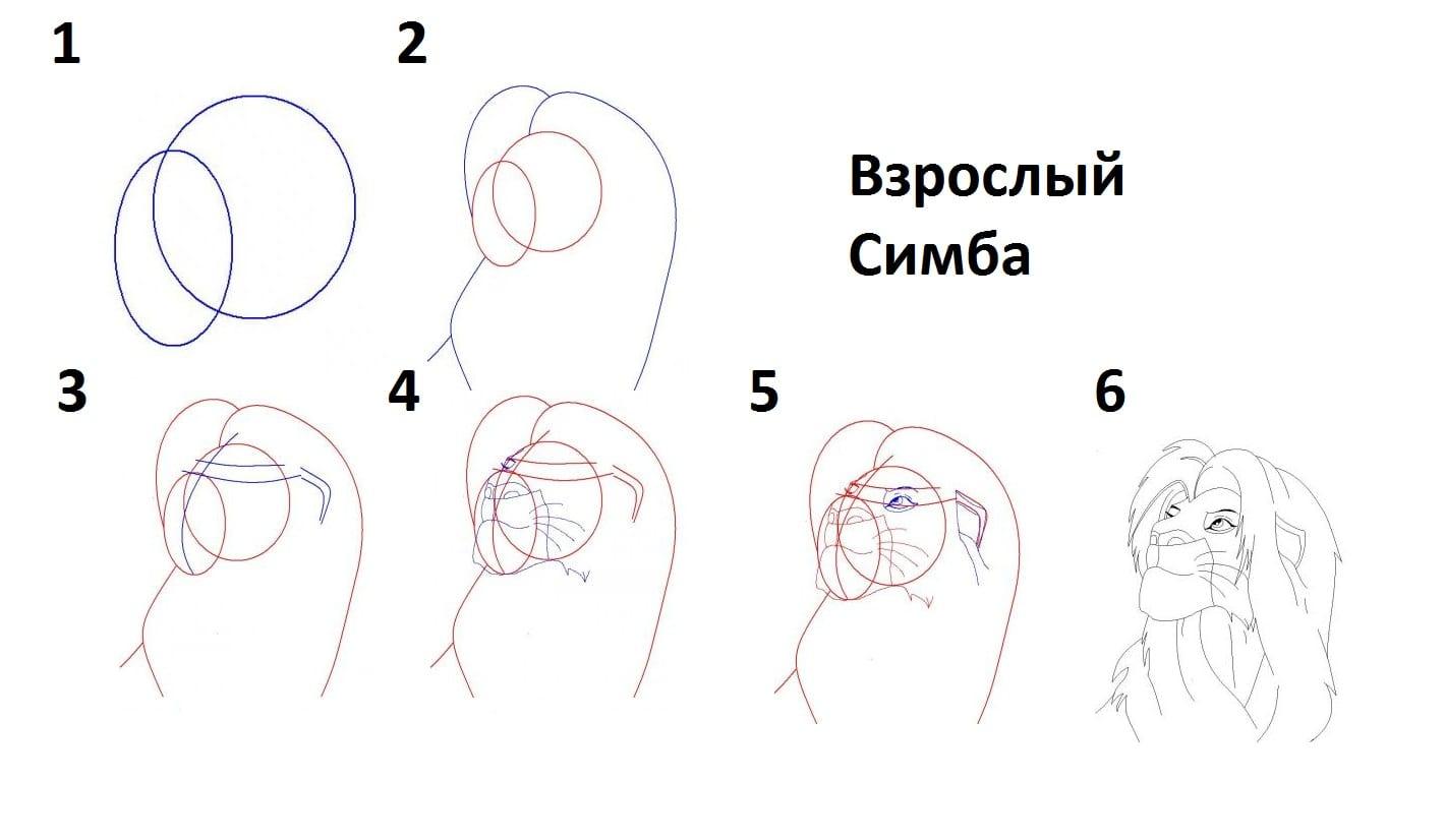как нарисовать взрослого Симбу