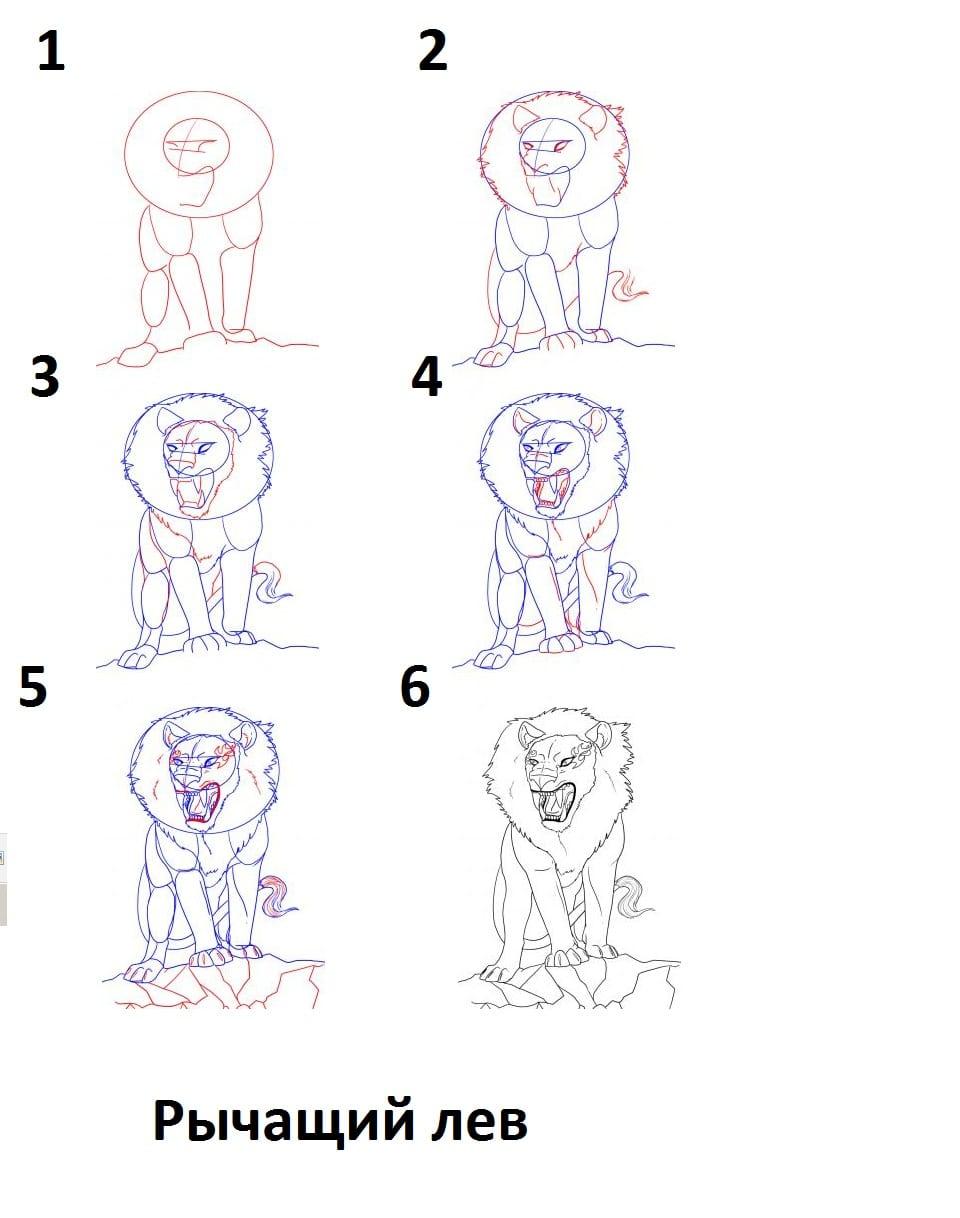 как нарисовать рычащего льва