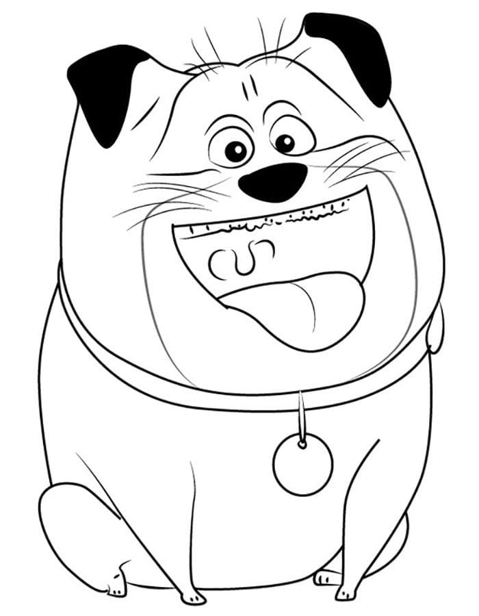 -жизнь-домашних-животных-раскраска-12 Тайная жизнь домашних животных раскраска (12)