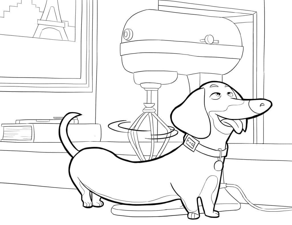 Тайная жизнь домашних животных раскраска (17)
