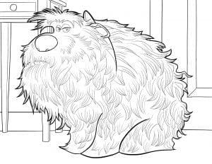 Тайная жизнь домашних животных раскраска (20)