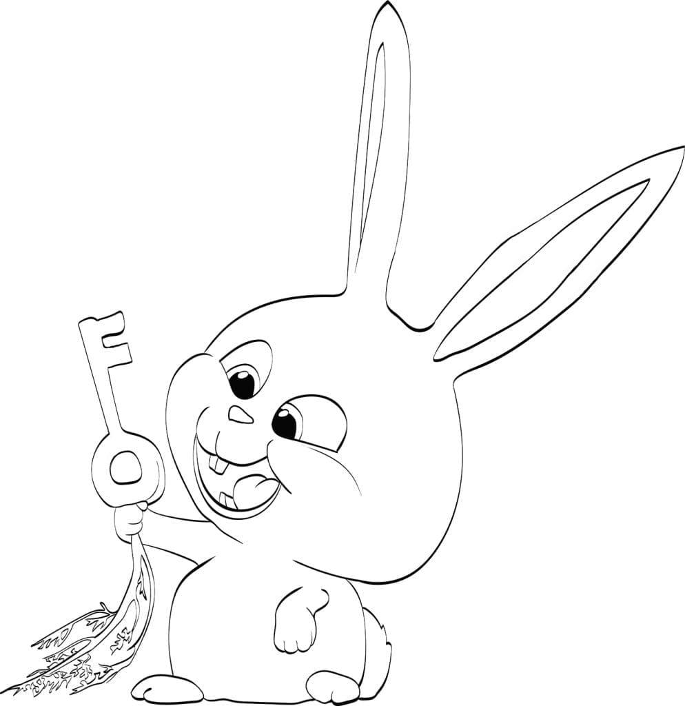 -жизнь-домашних-животных-раскраска-24-994x1024 Тайная жизнь домашних животных раскраска (24)