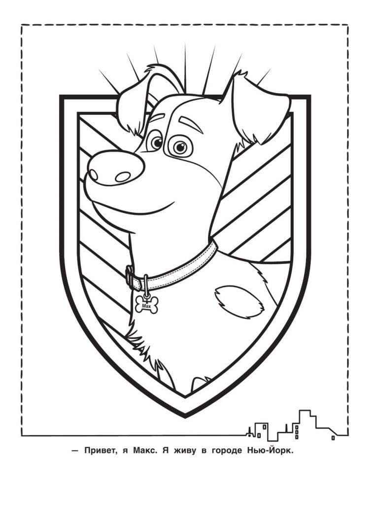 Тайная жизнь домашних животных раскраска (26)