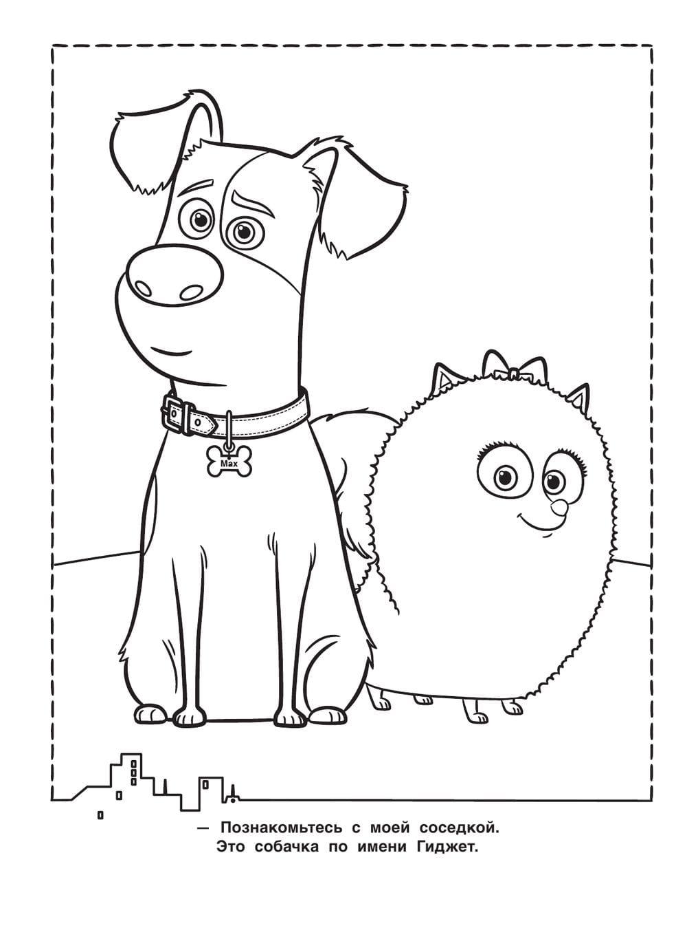 Раскраска тайная жизнь домашних животных распечатать бесплатно