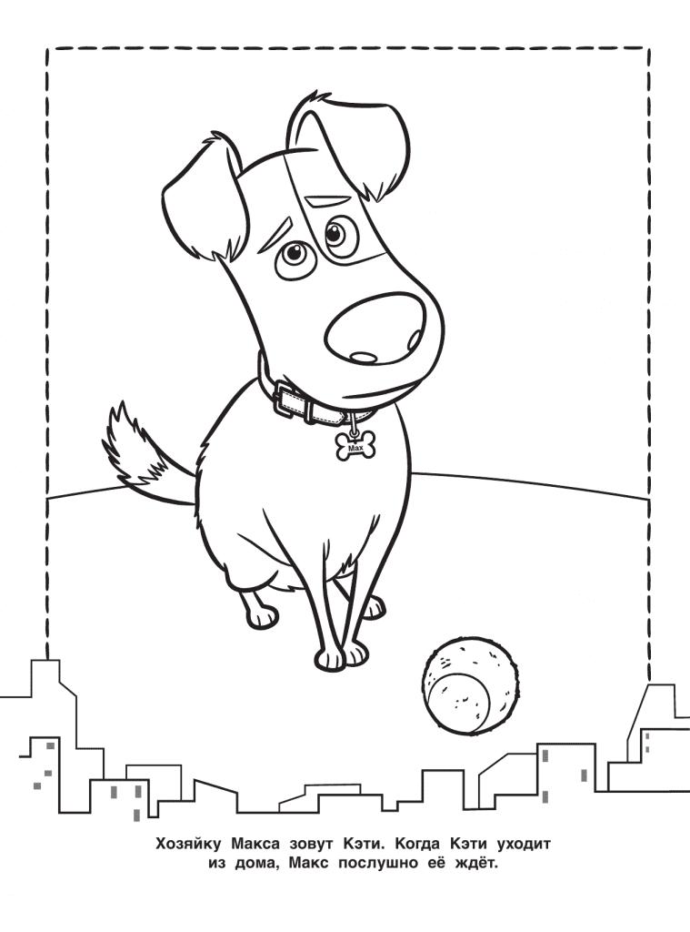 Тайная жизнь домашних животных раскраска (9)