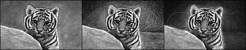 12 Как нарисовать тигренка поэтапно