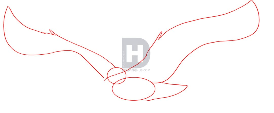2-2 Как нарисовать феникса