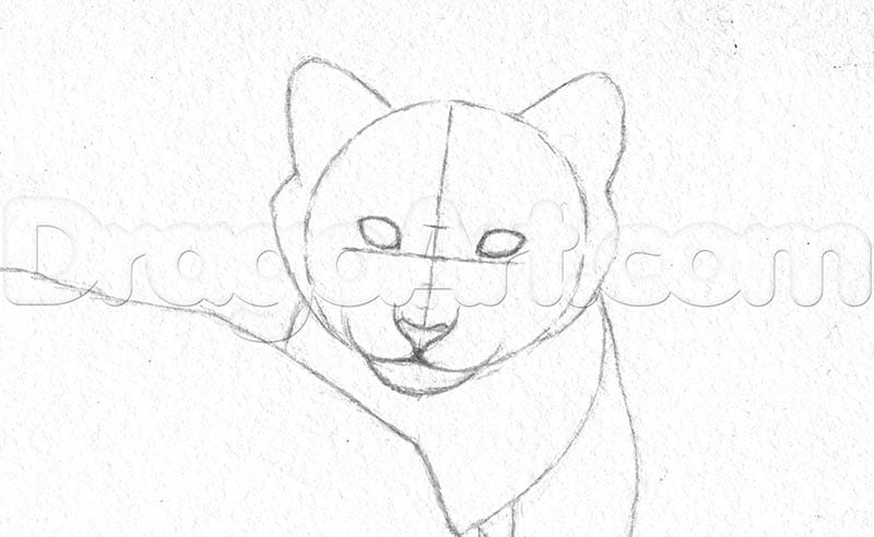 Как нарисовать тигренка поэтапно