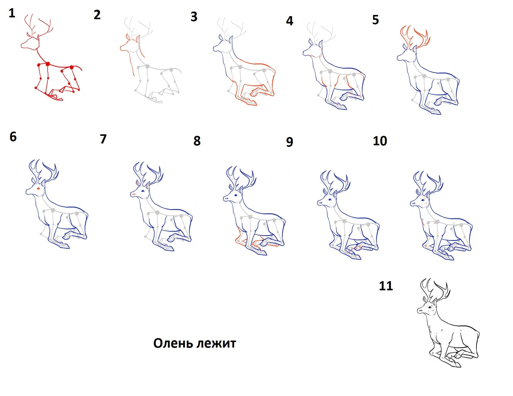 -лежит Как нарисовать оленя поэтапно
