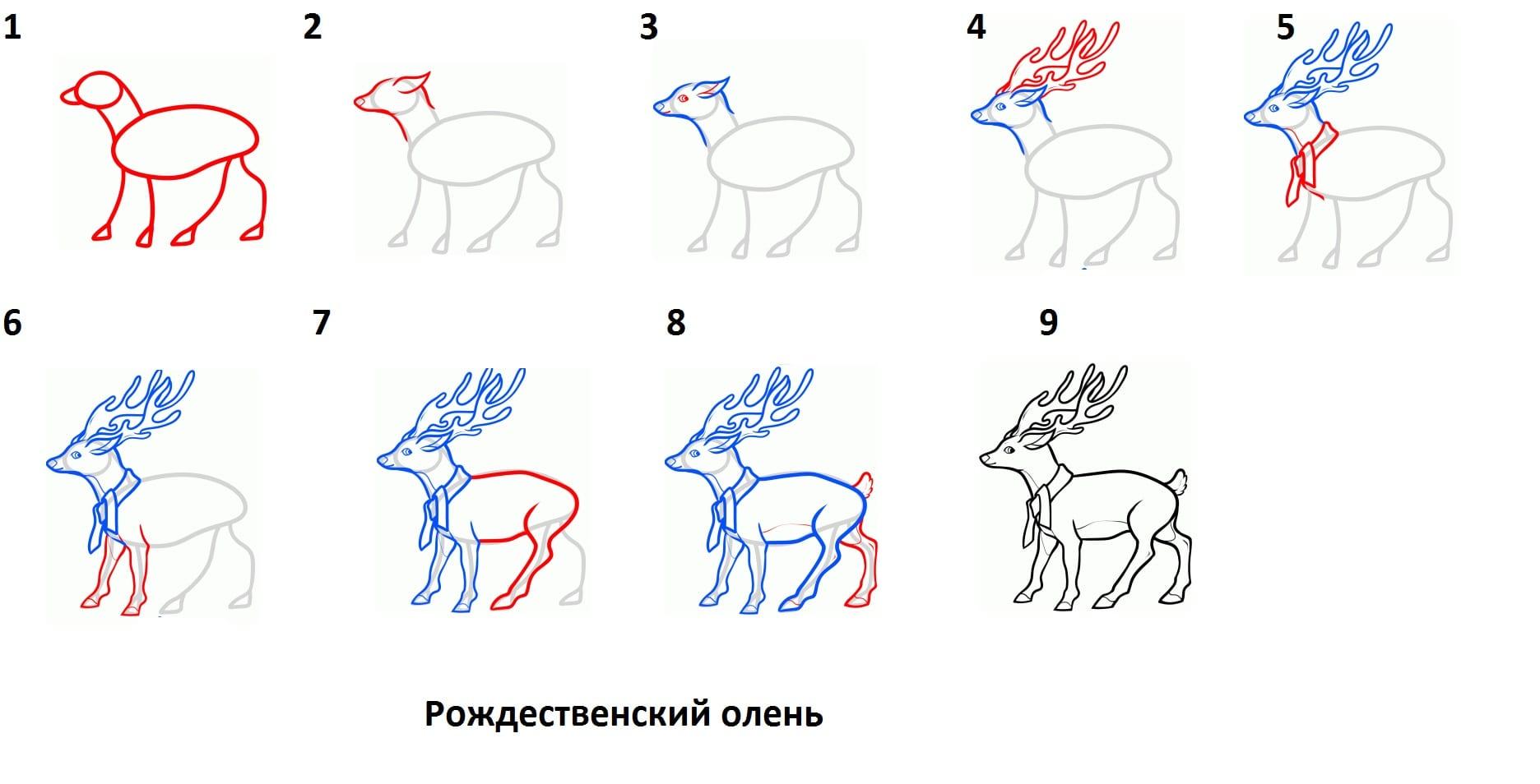 Картинки олень рисовать пошагово