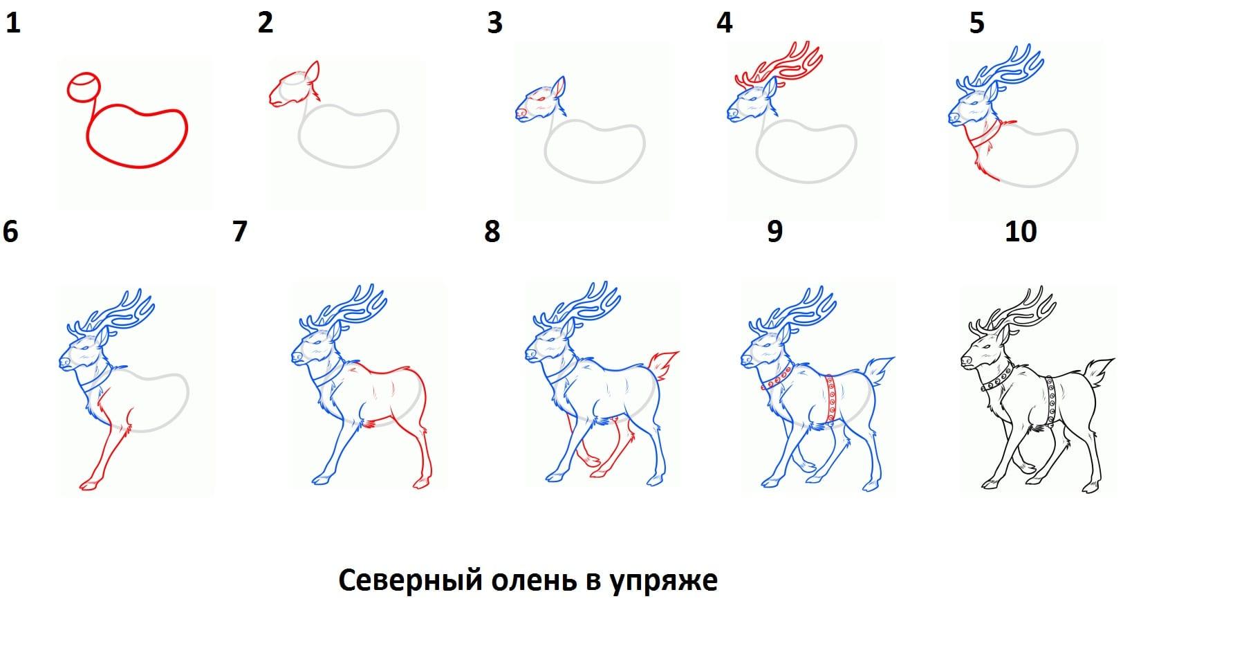 как нарисовать северного оленья в упряжке