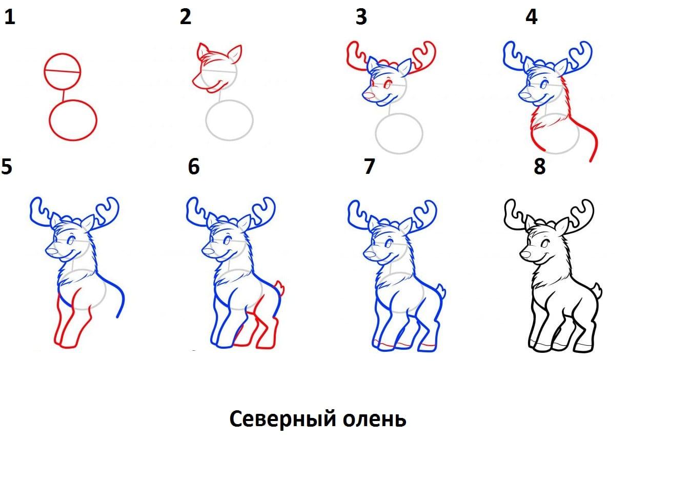 как нарисовать северного оленя