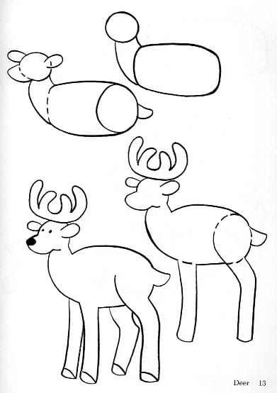 81dd8e6c89 Как нарисовать оленя поэтапно