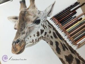 -300x225 Уроки рисования