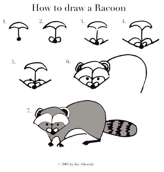 -нарисовать-енота Как нарисовать енота
