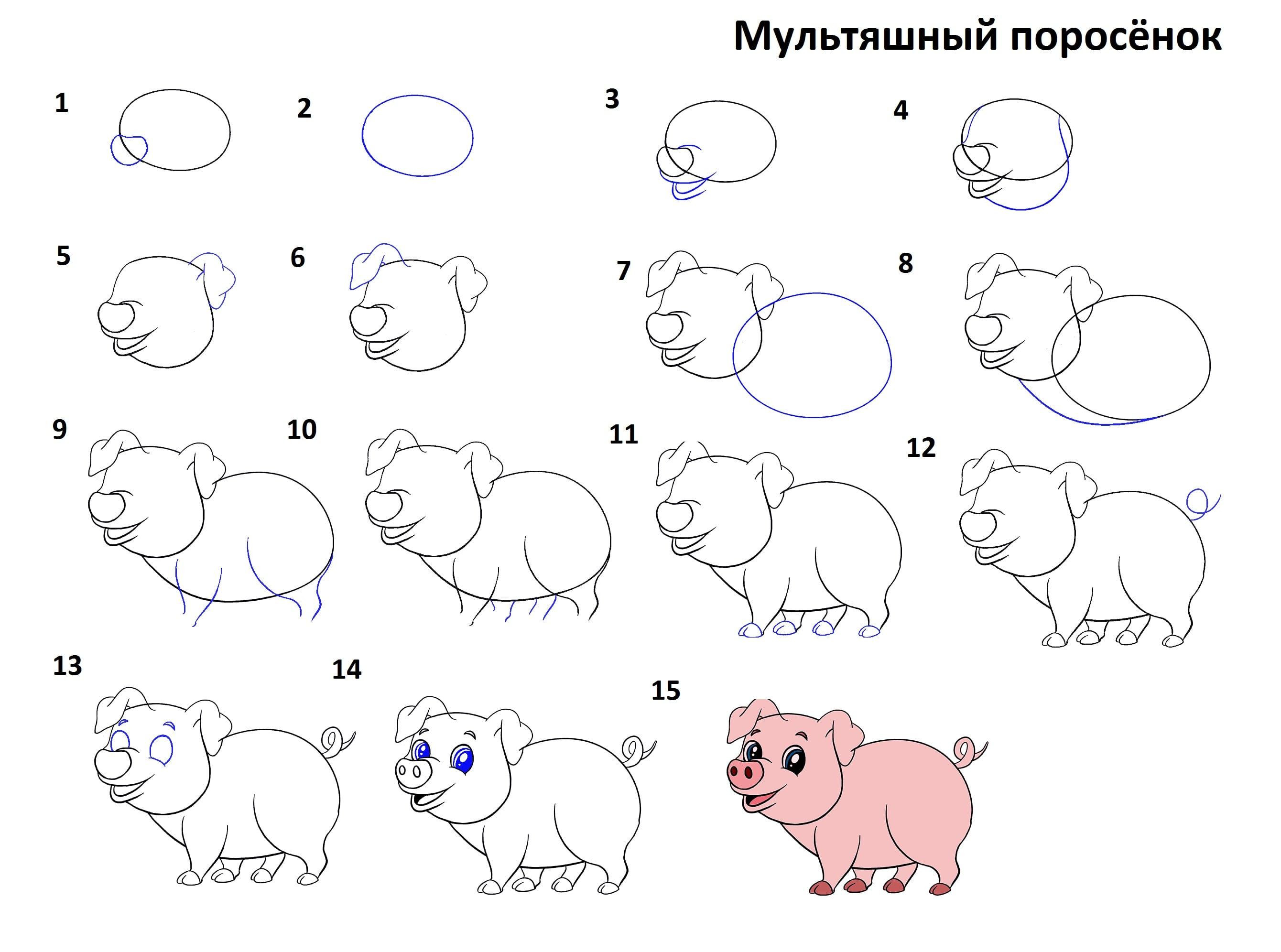 -поросёнок Как нарисовать свинью поэтапно