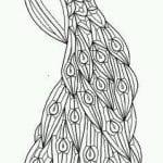 павлин картинка раскраска114
