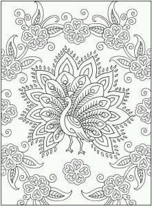 павлин картинка раскраска17